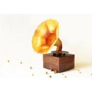 Mini Gramophone Box