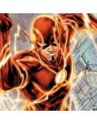 The Flash Combo